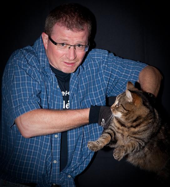 Katzenvideo